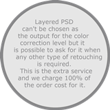 Order Layered PSD service for wedding photo editing