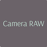 We use Camera RAW  for wedding photo editing
