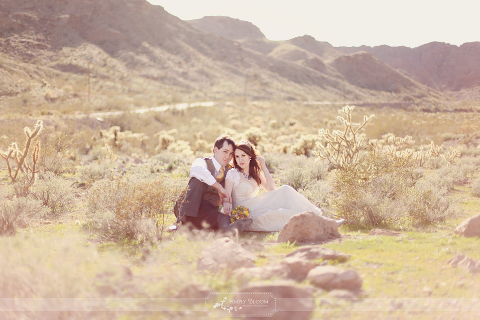 wedding-photo-nevada